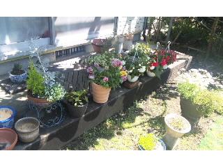 アリエッティの庭